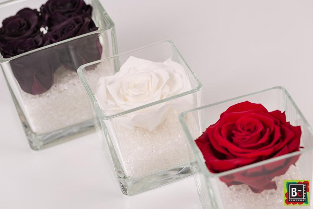 livraison de roses stabilisées